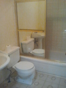 Remodeling a Small Bathroom - Toilet, Shower Stall
