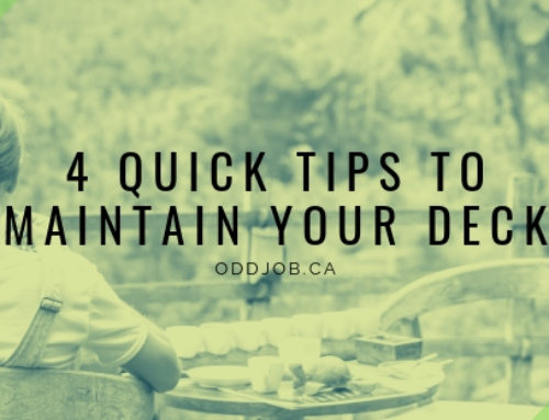 Maintain Your Deck: 4 Tips