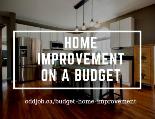 Home Improvement on a Budget