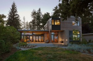 Ellis Residence contemporary green house architecture