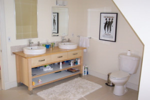 Bathroom Ideas with Odd Job